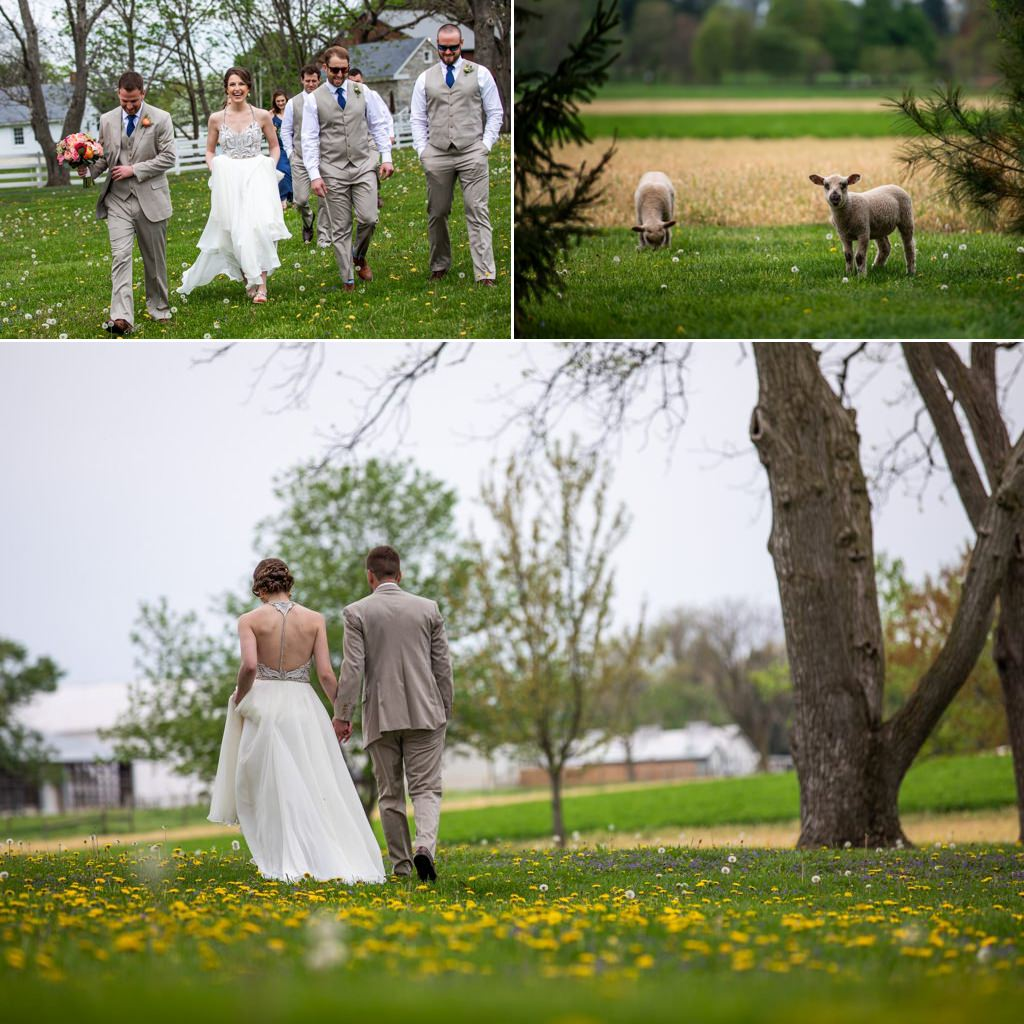 A bride and groom walking in a field at The Barn at Silverstone