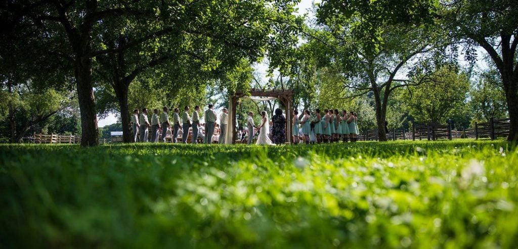 a backyard wedding ceremony