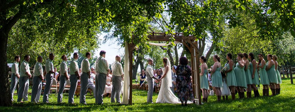 a backyard wedding ceremony under the trees
